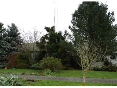 2 Bed 1 Bath Preforeclosure Property in Seattle, WA 98117 - 30th Ave NW