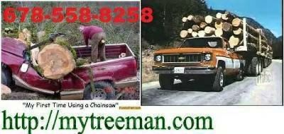 Call Ken- 678-558-8258 Free Estimate -Tree Service Tree Removal Tree & Bush Removal