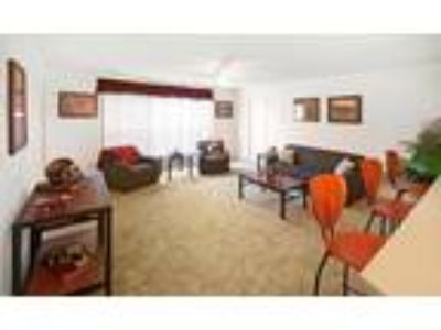 Collegiate Suites of Blacksburg - 4/2 Flex with Cathedral Ceilings - SOLD OUT !!