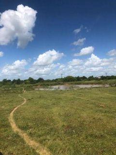 00 Oilfield Road Bellville, Acreage perimeter fenced, pond