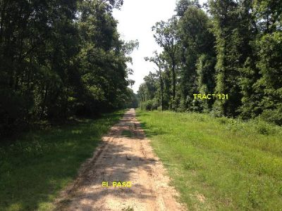 - $7500 1 ACRE 43,560 ft NO RESTRICTIONS BY LAKE LIVINGSTON $7500 CASH (By Lake Livingston, East Texas)