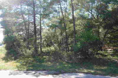 Lots 24-27 W State Hwy 20 Freeport, Beautiful wooded lot