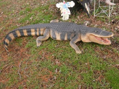 Life Size Fiberglass American Aligator Garden Statue
