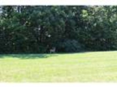 Charleston Real Estate Land for Sale. $39,900 - Emily Floyd of [url removed]