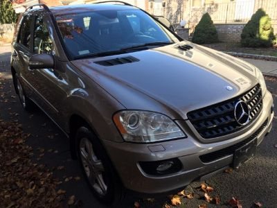 2006 Mercedes-Benz M-Class ML350 (Pewter Metallic)