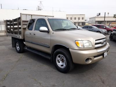2003 Toyota Tundra SR5 (Gold)
