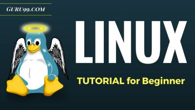 LINUX TUTORIAL FOR BEGINNERS AND PROFESSIONALS