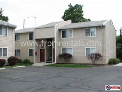 Spacious 2 Bed/1 Bath Lower Level Apartment - Pet Friendly!