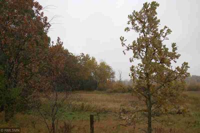 xxx 325 Avenue NE North Branch Township, Great hunting land