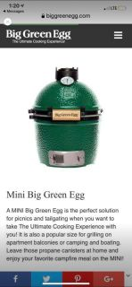 New mini green egg with nest