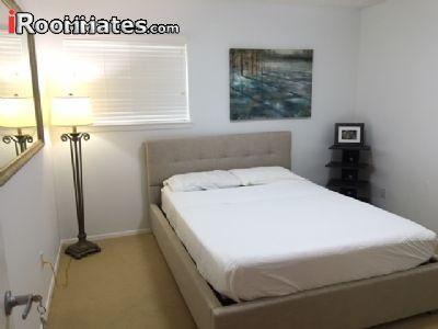 $500 3 apartment in North Austin