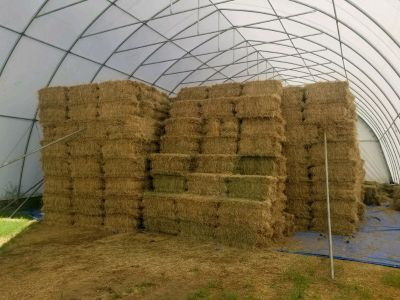 Squares of hay