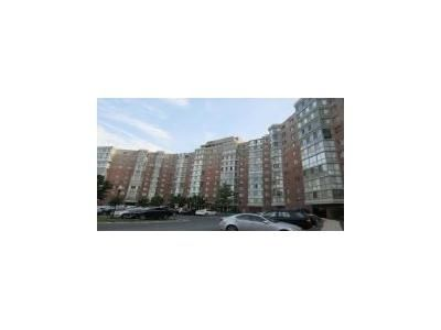 2 Bed 2 Bath Foreclosure Property in Silver Spring, MD 20906 - N Leisure World Blvd