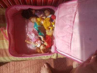 princess dolls with case