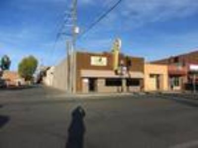 Commercial Building in Downtown Alamosa!