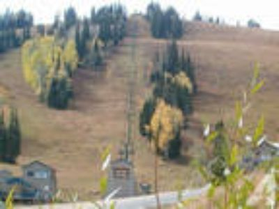 $90 / 2 BR - 1100ft - Ski in/ski out, at lift, 2 BA, in res