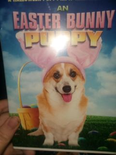 Easter bunny puppy dvd