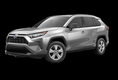 2019 Toyota RAV4 Hybrid LE (Silver Sky Metallic)