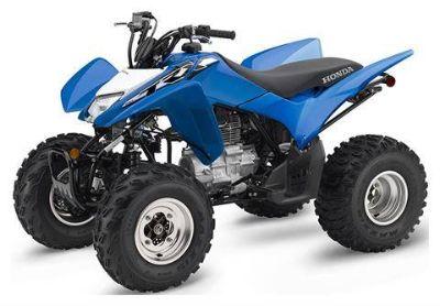2019 Honda TRX250X ATV Sport Bessemer, AL