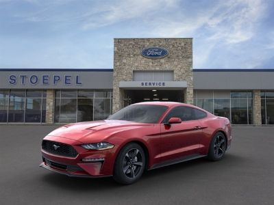 2019 Ford Mustang EcoBoost (Ruby Red Metallic)