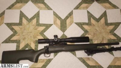 For Sale: Remington. 308
