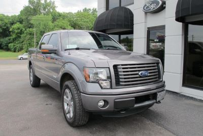2011 Ford F-150 XLT (Gray)