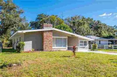 6307 Julie Street Tampa Three BR, **WIDE OPEN HOLIDAY VIEWINGS**