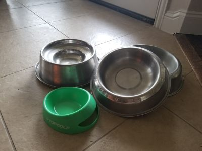 4 dog bowls, price for all