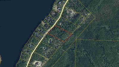 0010 Spring Lake Road Defuniak Springs, 4 Acre Wooded Lot