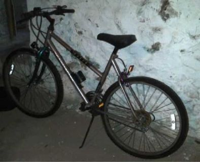 $60 Roadmaster Edge Mountain Bike (Park Hieght)
