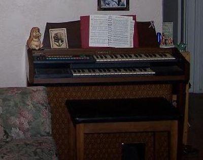 Nice organ for sale