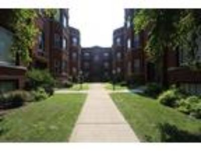 0 BR One BA In Chicago IL 60613
