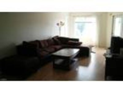 One BR One BA In Raleigh NC 27606