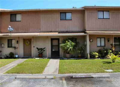 4005 Cedar Limb Court Tampa Two BR, Great investment property