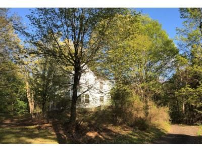 4 Bed 2 Bath Preforeclosure Property in Chatham, NY 12037 - High St