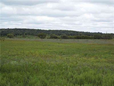 000 Cr 164 Eastland, A very nice piece of small acreage with