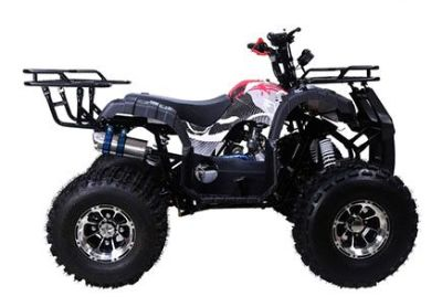 2018 Taotao USA TFORCE 120 Kids ATVs Lafayette, IN