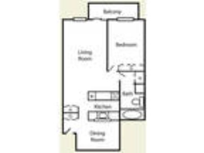 Harbor Pointe Apartments - One BR Extra Large