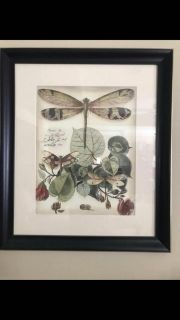Dragon fly Pictures set of 2