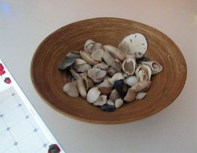 bowl of shells