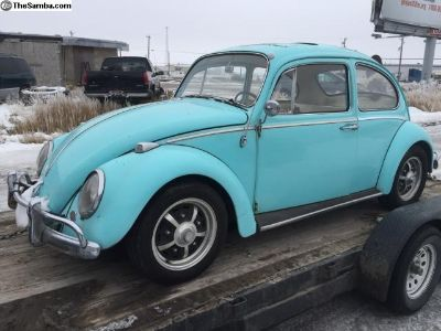 1965 Bug project with parts to fix.