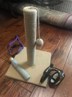 Cat scratching post with ball. $7. Other dog items available.