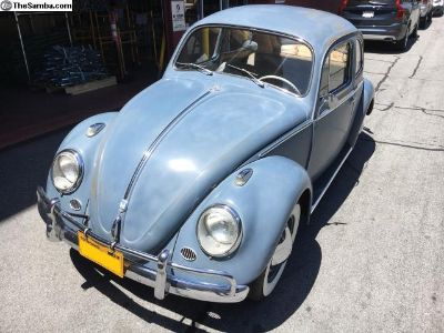 Very Original 1959 Bug