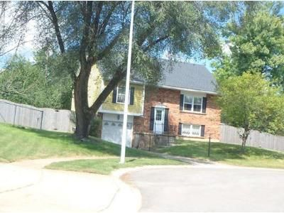3 Bed 2 Bath Preforeclosure Property in Englewood, OH 45322 - Michelle Ct