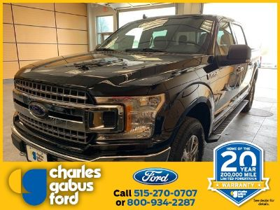 2019 Ford F-150 XL (School Bus Yellow)