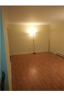 1 BR 1 Bath Fist Floor with Pat | Prospect Heights