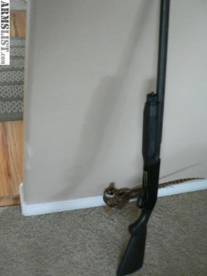 For Sale/Trade: Benelli m2 12 gauge
