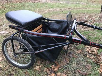 Miniature horse cart