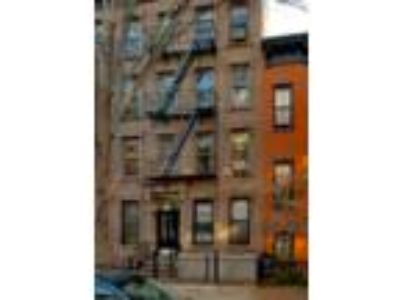 Large Studio Apartment Boerum Hill