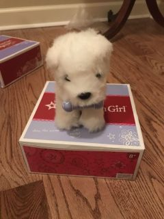 American girl Coconut the puppy